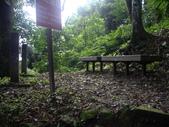 新竹北埔金龜岩登山步道、猴洞登山步道:IMGP9701.JPG