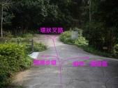 新竹寶山迴龍步道:IMGP7351.JPG