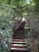 台中后里鳳凰山步道、觀音山步道:IMGP3824.JPG