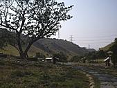 台中龍井竹坑-南寮登山步道:IMGP5859.JPG