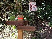 新竹尖石李棟山:IMGP1092.JPG