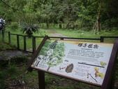 宜蘭員山福山植物園:IMGP5529.JPG