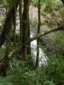 新北三峽雲森瀑布、組合山:DSCN3827.JPG
