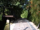 新竹橫山福沙大崎步道:IMGP9429.JPG
