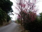新竹新埔石頭山:IMGP3144.JPG