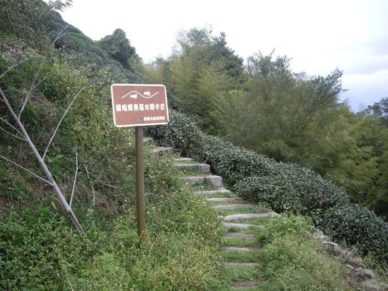 嘉義梅山二尖山、大尖山:IMGP8665.JPG