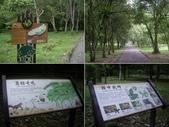 宜蘭員山福山植物園:IMGP5530-34.JPG