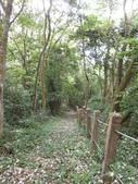 新竹北埔水磜村桐花林登山步道:DSCN3755.JPG