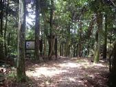 新竹北埔金龜岩登山步道、猴洞登山步道:IMGP9710.JPG