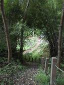 新竹北埔水磜村桐花林登山步道:DSCN3756.JPG