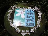 桃園龍潭小粗坑古道、小粗坑山:IMGP6831.JPG