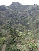 新北平溪頂子寮山、五分山:IMGP6513.JPG