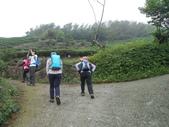 嘉義梅山雲嘉五連峰(太平山、梨子腳山、馬鞍山、二尖山、大尖山):DSCN4389.JPG