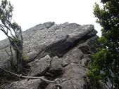 新北汐止夢湖、新山:IMGP6725.JPG
