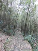 嘉義梅山雲嘉五連峰(太平山、梨子腳山、馬鞍山、二尖山、大尖山):DSCN4468.JPG