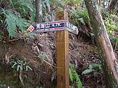 台中和平馬崙山、新山:IMGP2205.JPG