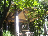 台北內湖白鷺鷥山、康樂山、柿子山:IMGP7036.JPG