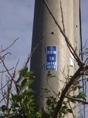 苗栗後龍崎頂、好望角步道:IMGP4664.JPG