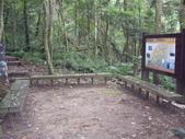 新竹北埔金龜岩登山步道、猴洞登山步道:IMGP9713.JPG