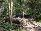 宜蘭三星拳頭姆自然步道:IMGP1877.JPG