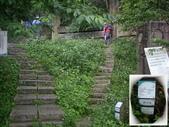 南投魚池水社大山登山步道、卜吉山:IMGP2153.JPG