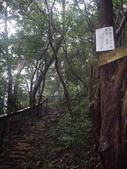新竹關西石光古道、面埔頂山:IMGP3614.JPG