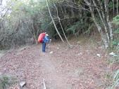 台中和平閂山鈴鳴山(DAY1-閂山):DSCN4185.JPG
