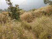 台中和平閂山鈴鳴山(DAY1-閂山):DSCN4266.JPG
