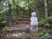 新竹北埔金龜岩登山步道、猴洞登山步道:IMGP9716.JPG