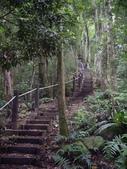 新竹北埔金龜岩登山步道、猴洞登山步道:IMGP9717.JPG