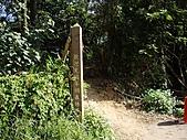 桃園蘆竹羊稠坑森林步道、拔崁腳山、尖山、羊稠坑山、土地公頭山:IMGP5947.JPG