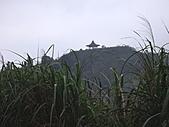 新北平溪頂子寮山、五分山:IMGP6518.JPG
