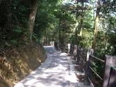 新竹橫山福沙大崎步道:IMGP9432.JPG