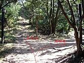 桃園蘆竹羊稠坑森林步道、拔崁腳山、尖山、羊稠坑山、土地公頭山:IMGP5955.JPG