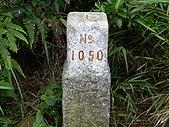 新竹芎林飛鳳山:IMGP1392.JPG