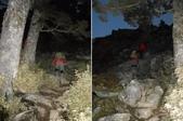 台東海端嘉明湖國家步道DAY-3(嘉明湖避難山屋→向陽國家森林遊樂區):DSCN3709-10.JPG