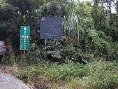 台中新社花海、暗影山:IMGP2596.JPG