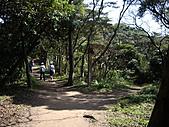 桃園蘆竹羊稠坑森林步道、拔崁腳山、尖山、羊稠坑山、土地公頭山:IMGP5958.JPG
