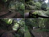 台北石門青山瀑布步道、尖山湖步道:IMGP9763-67.JPG
