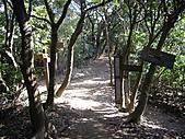 桃園蘆竹羊稠坑森林步道、拔崁腳山、尖山、羊稠坑山、土地公頭山:IMGP5959.JPG