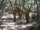 桃園蘆竹羊稠坑森林步道、拔崁腳山、尖山、羊稠坑山、土地公頭山:IMGP5962.JPG