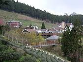 新竹五峰鵝公髻山:IMGP0724.JPG