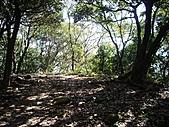 桃園蘆竹羊稠坑森林步道、拔崁腳山、尖山、羊稠坑山、土地公頭山:IMGP5963.JPG