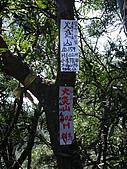 苗栗三義南火炎山、火炎山,順遊卓蘭大安溪大峽谷:IMGP1245.JPG