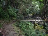 台北石門青山瀑布步道、尖山湖步道:IMGP9769.JPG