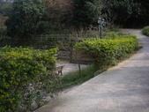 新竹寶山迴龍步道:IMGP7343A.JPG
