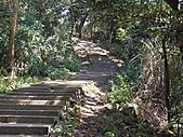 桃園蘆竹羊稠坑森林步道、拔崁腳山、尖山、羊稠坑山、土地公頭山:IMGP5965.JPG