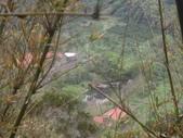 新竹新埔箭竹窩懷祖步道、中坑步道:IMGP7562.JPG