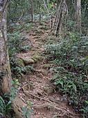 新竹關西赤柯山、赤柯山南峰、東獅頭山:IMGP6327.JPG