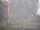 嘉義竹崎獨立山:IMGP8717.JPG